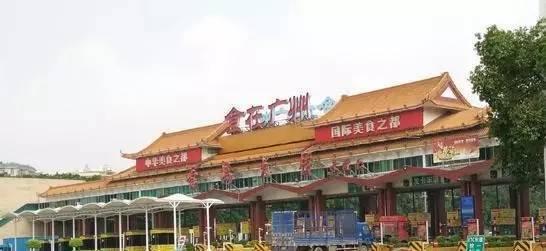 """""""食在广州""""何以传承?"""