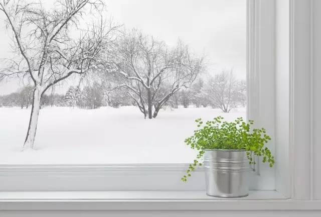 今日大雪,这个节气你了解吗? 附饮食养生攻略