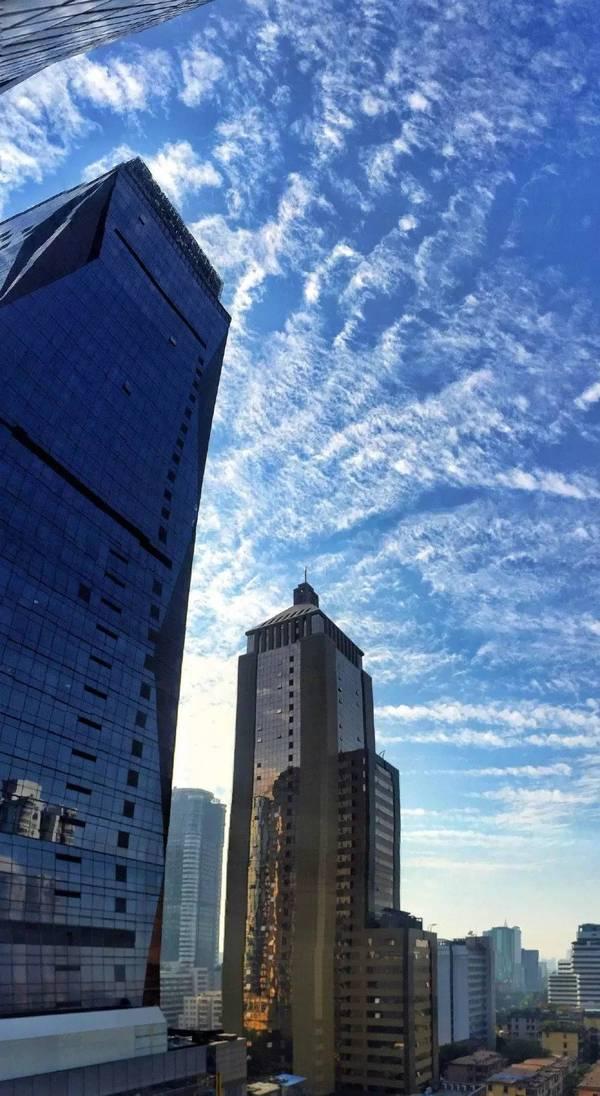 12月的广州,美的不要不要