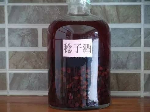 儿时的记忆,这种水果在广东各大山头已经成熟