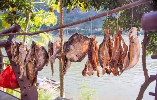 周末出发,广州附近这6个小渔村,景美海鲜更好吃!